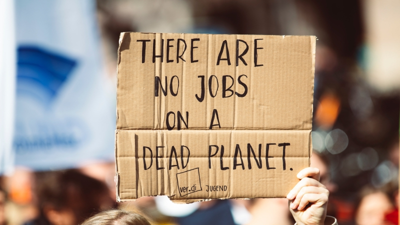 6 Big Net Zero Companies Screened for Climate Action