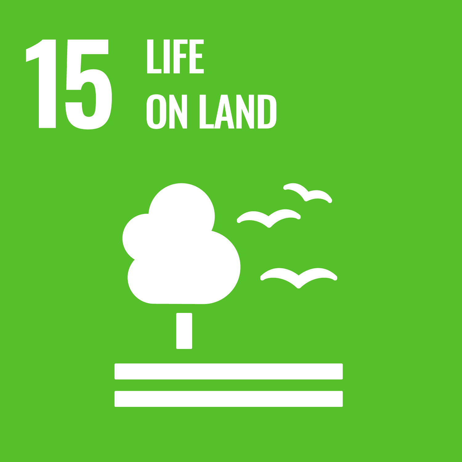 Icon for UN sustainable development goal 15 - Life on Lands