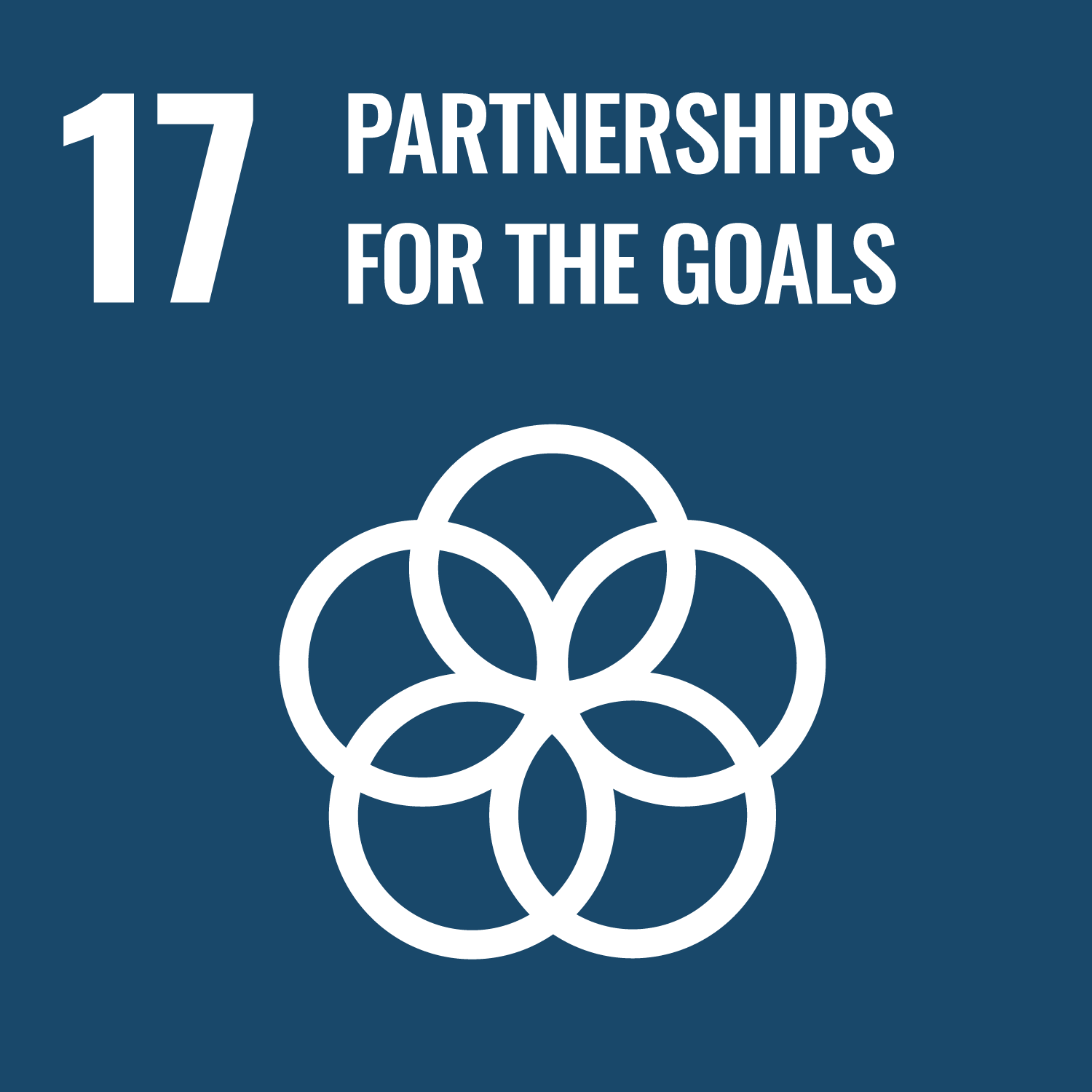Icon for UN sustainable development goal 17 - Global Partnerships