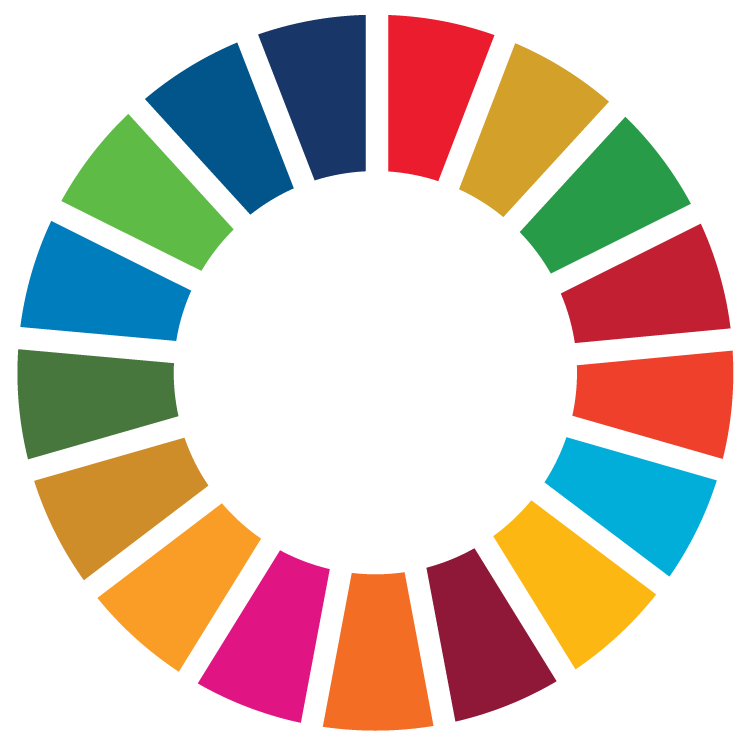 UN Sustainable Development Logo - The Colour Wheel of all Goals