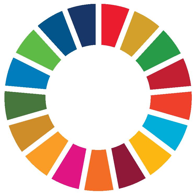 UN Sustainable Development Logo - The Colour Wheel of all Goals